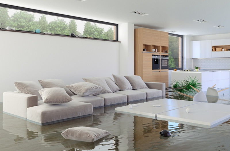 Flood Remediation - Devine Carpet Cleaning Care